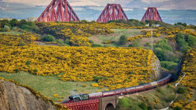 441415-scotland-from-the-roadside-not-for-reuse